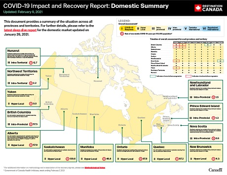 COVID-19 Impact and Recovery Report: Domestic Summary