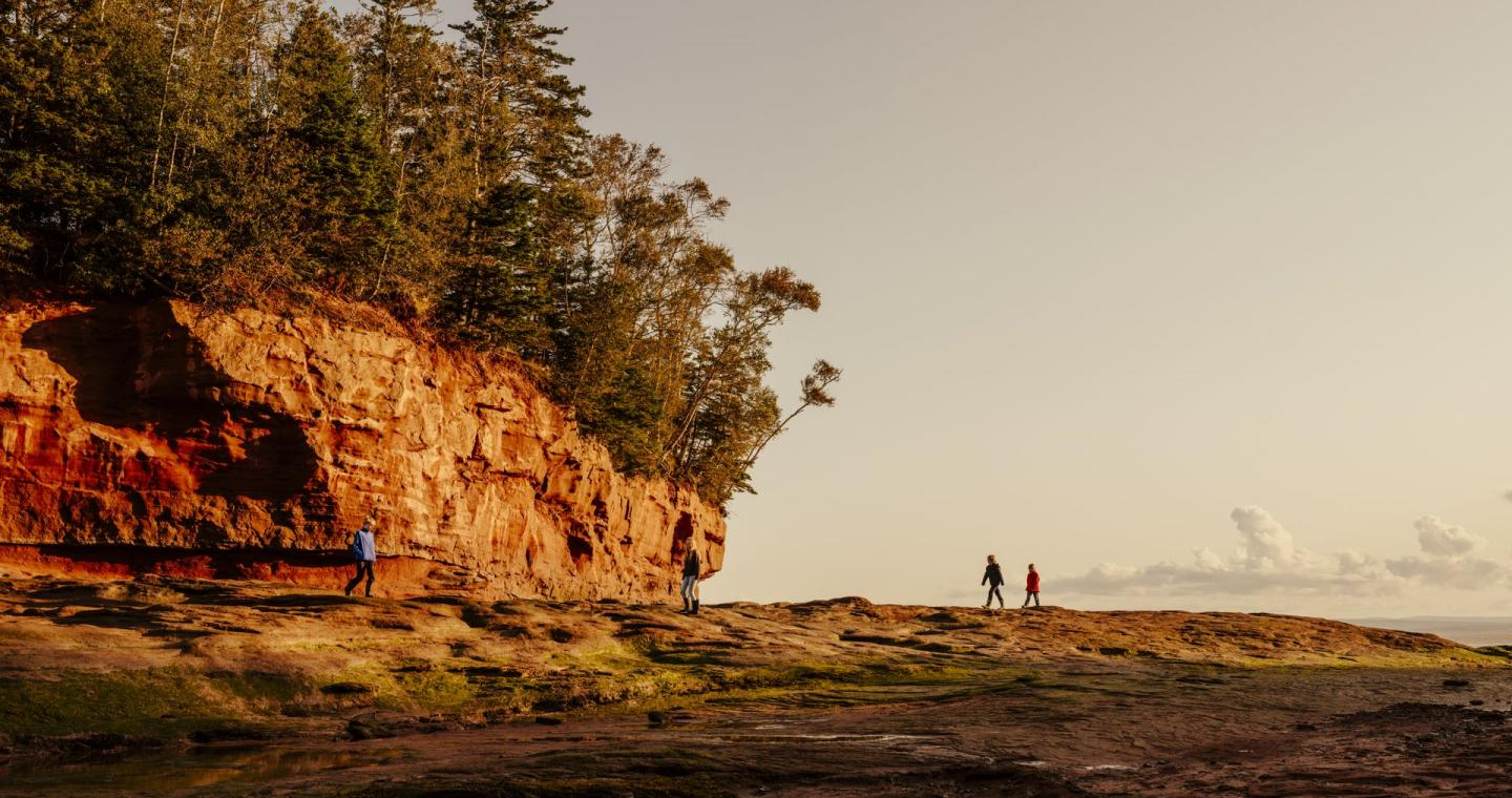 Photo of four people walking in Burntcoat Head Park, Nova Scotia